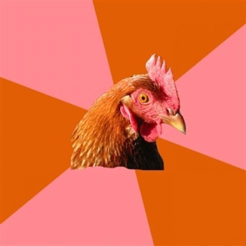<h2>Anti-Joke Chicken</h2>